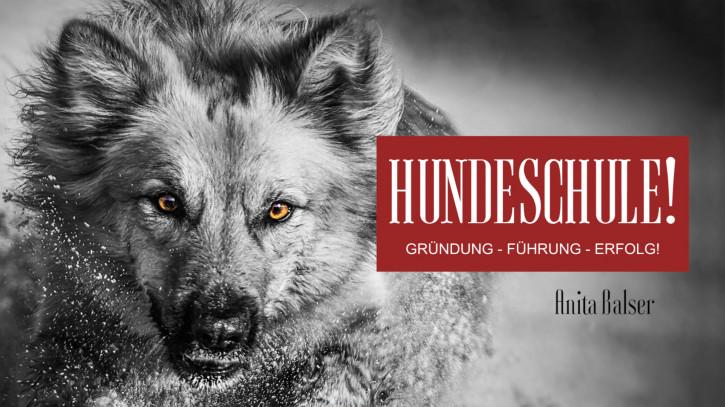 HUNDESCHULE! Gründung – Führung – Erfolg!