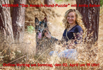"""Webinar """"Das Mensch-Hund-Puzzle"""""""