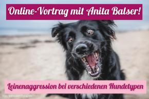 """Onlinevortrag """"Leinenaggression - Ursachen bei verschiedenen Hundetypen"""""""